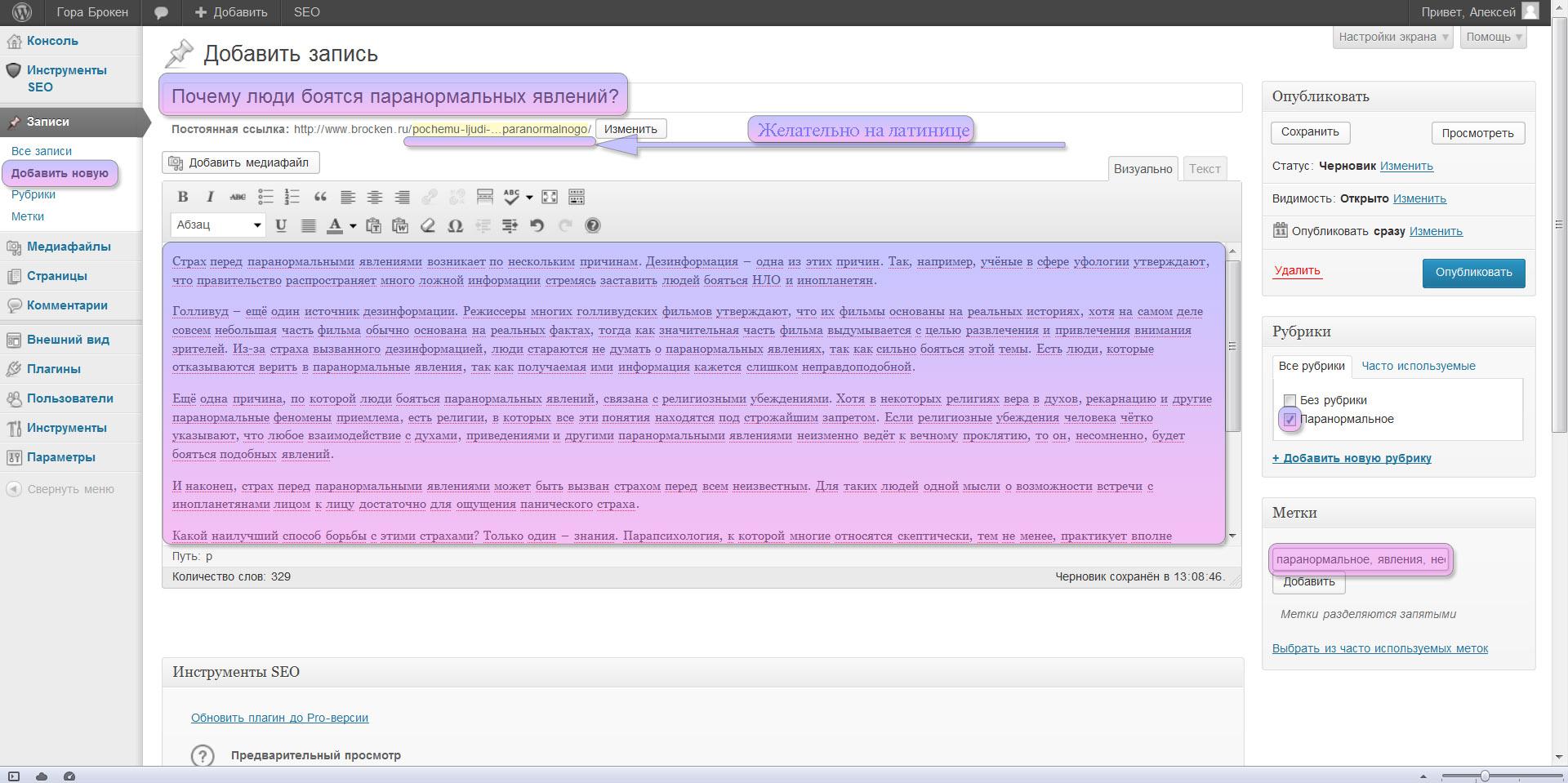Wordpress input content