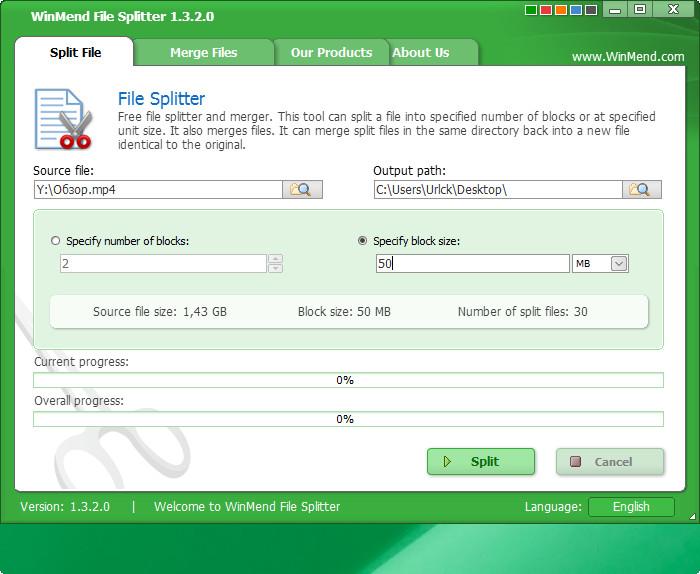 WinMend File Splitter