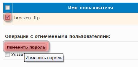 FTP Новый пароль