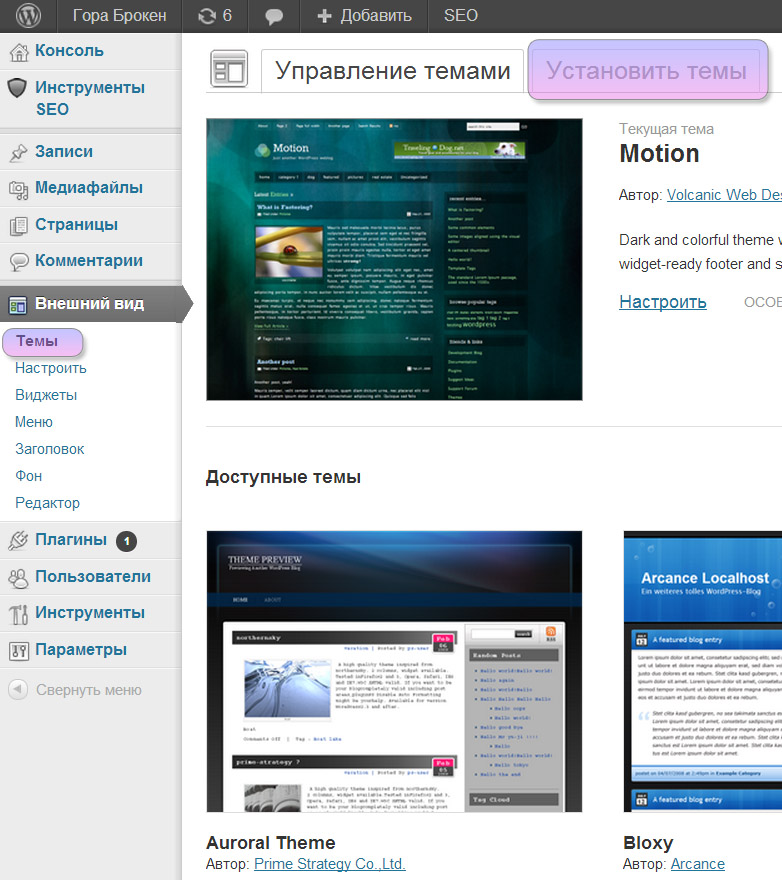 Wordpress install theme