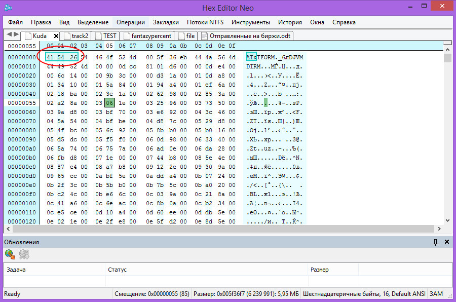 Открытый в HEX-редакторе файл