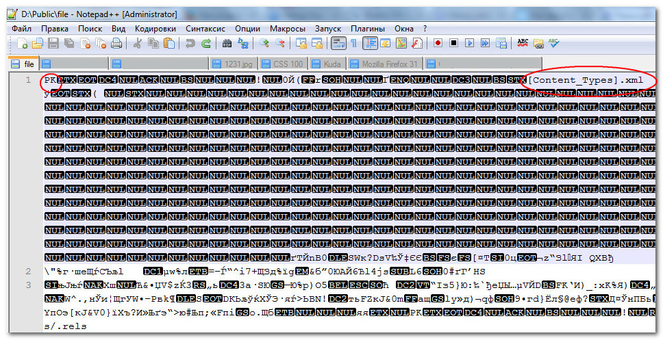 Файл является размеченным текстовым документом