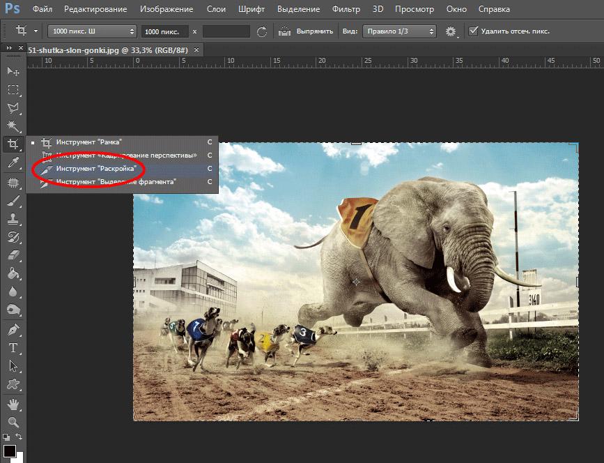 Разрезать фото онлайн на равные части