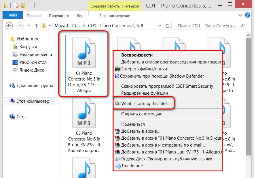 Что блокирует этот файл?