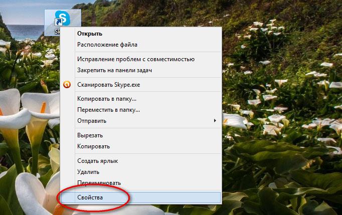 Skype.exe