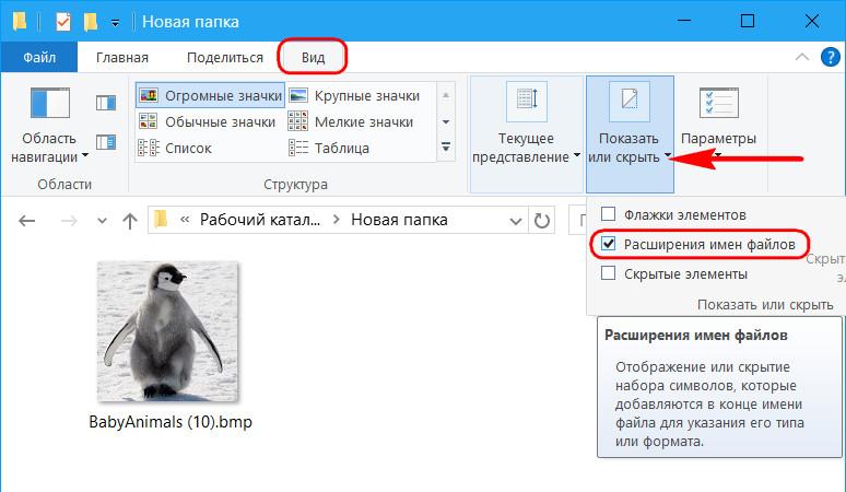 Расширение файлов