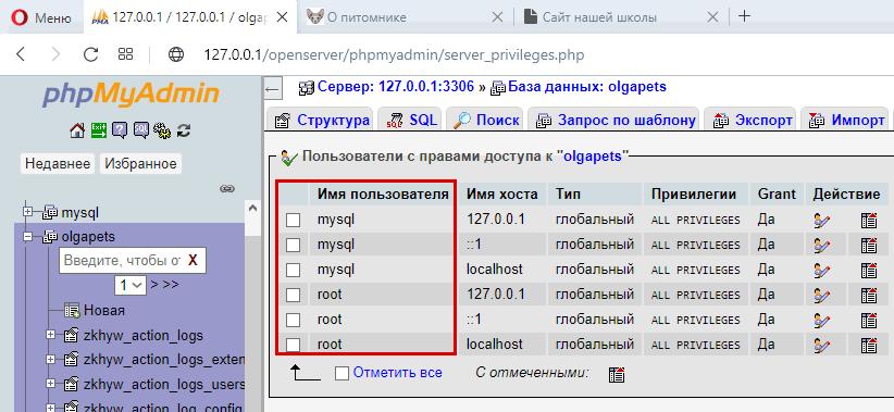 Пользователи БД