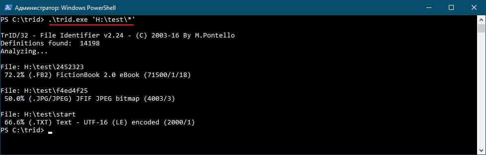 TrID File Type